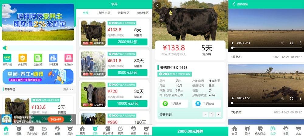 【牧场养牛】带积分商城+抽奖+会员特权 养殖类任务类源码